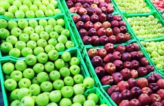 Biokennis Café marketing groenten en fruit